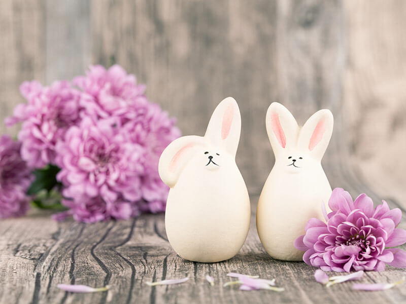 easter-bunny2-offer-block.jpg