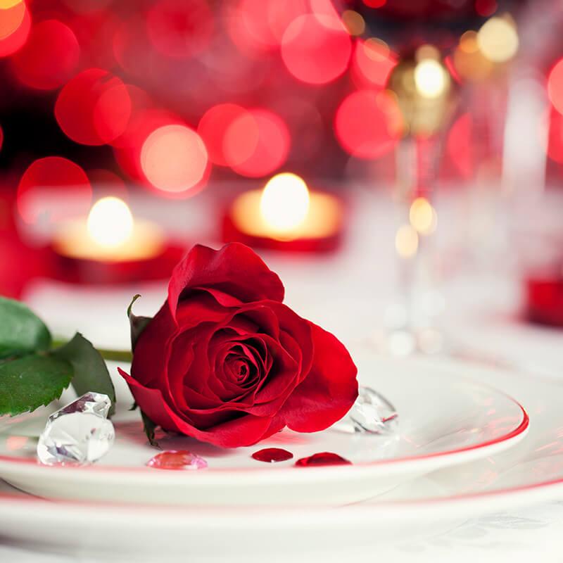 valentines-rose-stock-spslider.jpg
